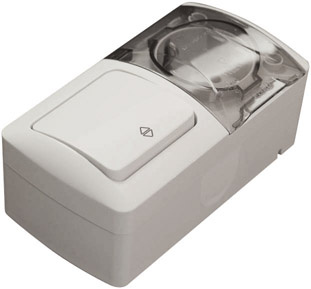 Two Way Switch & Socket Outlet (Earthed)