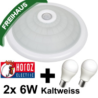 360° Sensor Deckenlampe mit Bewegungsmelder 2x 6W LED Kaltweiss 6400K