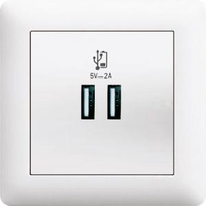 KOMBI USB DOSE LADEGERÄT DOPPEL USB ( Eisnatz +...